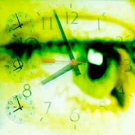persons eye